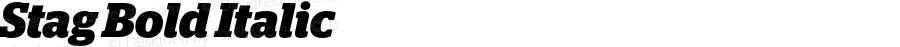 Stag Bold Italic Version 2.001;PS 002.001;hotconv 1.0.50;makeotf.lib2.0.16970