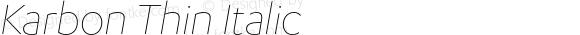 Karbon Thin Italic