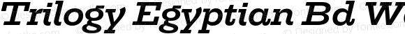 Trilogy Egyptian Bd Wd Semi-expanded Italic