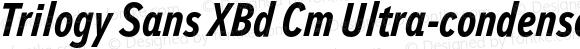 Trilogy Sans XBd Cm Ultra-condensed Italic