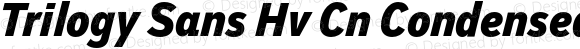 Trilogy Sans Hv Cn Condensed Italic