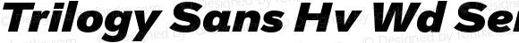 Trilogy Sans Hv Wd Semi-expanded Italic