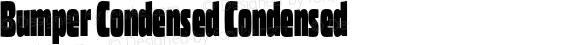 Bumper Condensed Condensed
