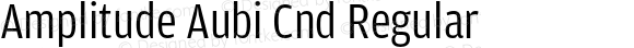 Amplitude Aubi Cnd Regular Version 001.001; t1 to otf conv