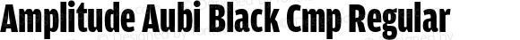 Amplitude Aubi Black Cmp Regular Version 001.001; t1 to otf conv