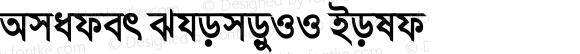 Amader ShomoyII Bold 6.0.1.0