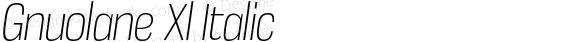 Gnuolane Xl Italic Version 2.002