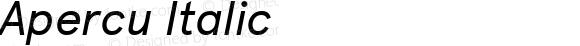 Apercu Italic Version 1.000