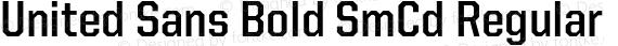 United Sans Bold SmCd Regular preview image