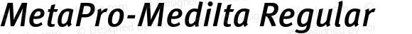 MetaPro-MediIta Regular Version 7.504; 2005; Build 1021