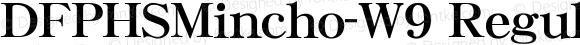 DFPHSMincho-W9 Regular