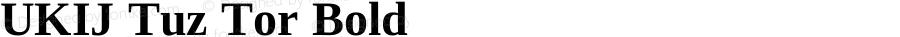 UKIJ Tuz Tor Bold Version 3.10 May 12, 2011