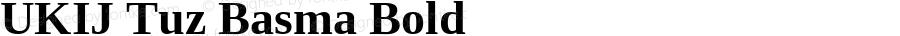 UKIJ Tuz Basma Bold Version 3.10 April 8, 2011