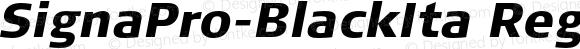 SignaPro-BlackIta Regular Version 7.504; 2006; Build 1022