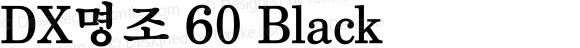 DX명조 60 Black