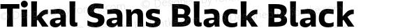 Tikal Sans Black Black 1.000