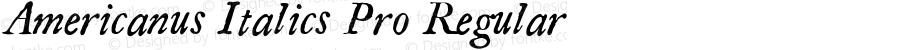 Americanus Italics Pro Regular Version 1.000