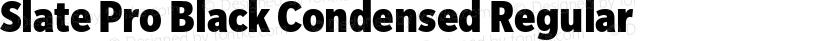 Slate Pro Black Condensed Regular Preview Image