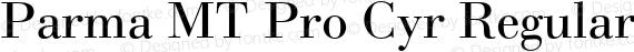 Parma MT Pro Cyr Regular preview image