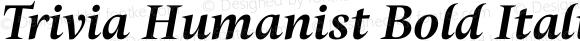 Trivia Humanist Bold Italic