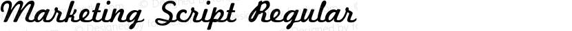 Marketing Script Regular Preview Image