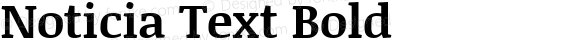 Noticia Text Bold Version 1.003