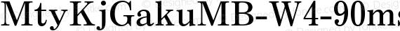 MtyKjGakuMB-W4-90msp-RKSJ-H Regular preview image