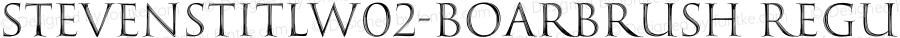 StevensTitlW02-BoarBrush Regular Version 1.00
