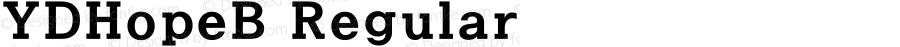 YDHopeB Regular Version 3.4; 빌드 20120415