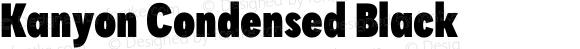 Kanyon Condensed Black