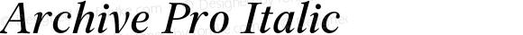 Archive Pro Italic Version 1.000