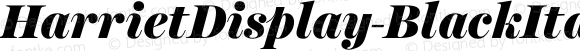 HarrietDisplay-BlackItalic Black Italic