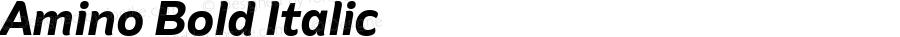 Amino Bold Italic Version 2.01 : 2013;com.myfonts.cadson-demak.amino.bold-italic.wfkit2.41JU