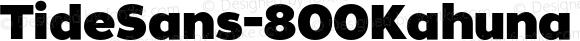 TideSans-800Kahuna ? Version 1.000;PS 005.000;hotconv 1.0.70;makeotf.lib2.5.58329;com.myfonts.kyle-wayne-benson.tide-sans.kahuna.wfkit2.44Us