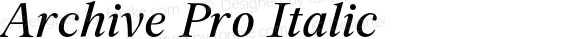 Archive Pro Italic