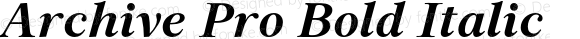Archive Pro Bold Italic