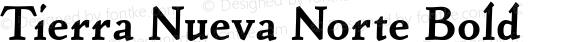 Tierra Nueva Norte Bold Version 1.001
