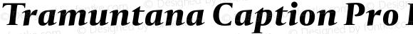 Tramuntana Caption Pro Heavy Italic