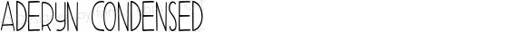 Aderyn Condensed