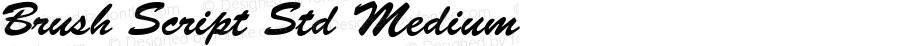 Brush Script Std Medium OTF 1.020;PS 001.003;Core 1.0.31;makeotf.lib1.4.1585