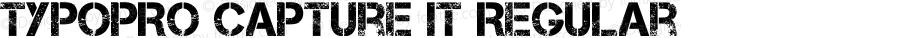 TypoPRO Capture It Regular Version 1.7 October 31, 2012