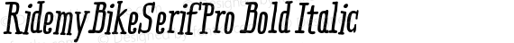 RidemyBikeSerifPro Bold Italic preview image
