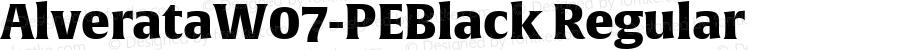 AlverataW07-PEBlack Regular Version 1.100