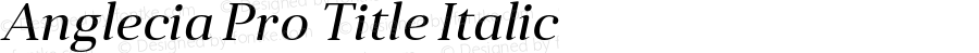 Anglecia Pro Title Italic Version 001.000;com.myfonts.konstantynov.anglecia-pro.title-italic.wfkit2.47ML