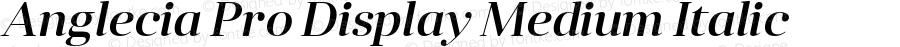 Anglecia Pro Display Medium Italic Version 001.000;com.myfonts.konstantynov.anglecia-pro.display-medium-italic.wfkit2.47MB