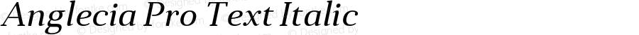 Anglecia Pro Text Italic Version 001.000;com.myfonts.konstantynov.anglecia-pro.text-italic.wfkit2.47MF