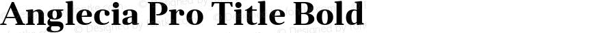 Anglecia Pro Title Bold Version 001.000;com.myfonts.konstantynov.anglecia-pro.title-bold.wfkit2.47My