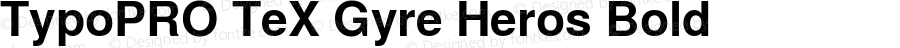 TypoPRO TeX Gyre Heros Bold Version 2.004;PS 2.004;hotconv 1.0.49;makeotf.lib2.0.14853