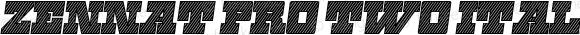 Zennat Pro Two Italic