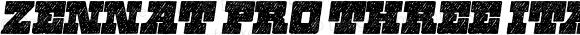 Zennat Pro Three Italic